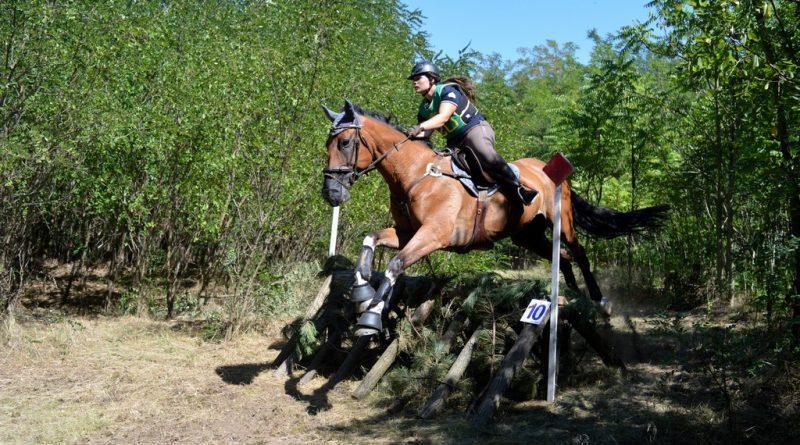Debütált a lovastusa Újerdőn